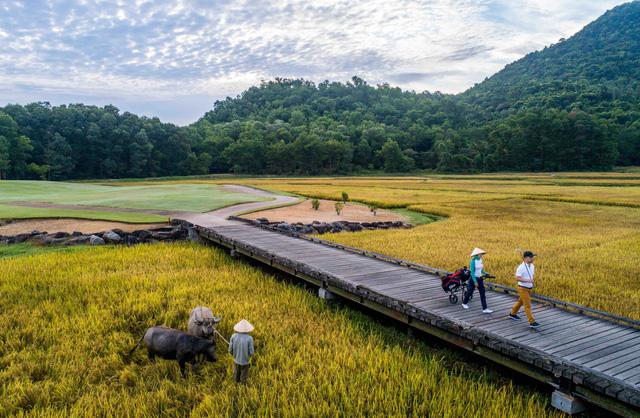Không chỉ bảo vệ tối đa vẻ đẹp của thiên nhiên, Laguna Lăng Cô còn làm cho thiên nhiên hoàn hảo hơn với các kiến tạo cảnh quan độc đáo. Cánh đồng lúa trên đường ra sân golf mang đến cảm giác đặc biệt thú vị ngoài những yếu tố chuyên nghiệp của một sân golf 18 hố được thiết kế bởi golfer huyền thoại Nick Faldo.