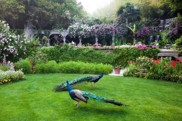Năm 1992, Zhang cùng người yêu sang Đức và đã làm việc tại một vườn thực vật. Sau khi trở về nước, Zhang ấp ủ dự định biến giấc mơ có được một khu vườn của riêng mình trở thành sự thực.