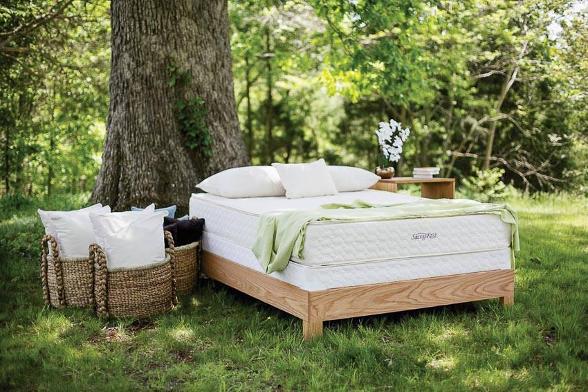 Giấc ngủ trưa mát mẻ trong vườn 11