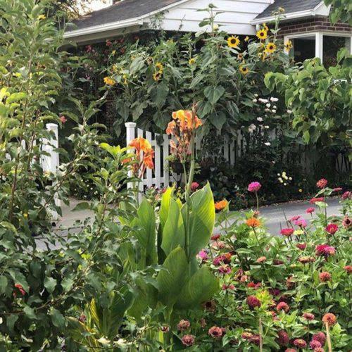 Cuộc sống vô cùng yên bình của cặp vợ chồng cùng 4 con trai bên khu vườn đầy hoa và rau - Ảnh 18.
