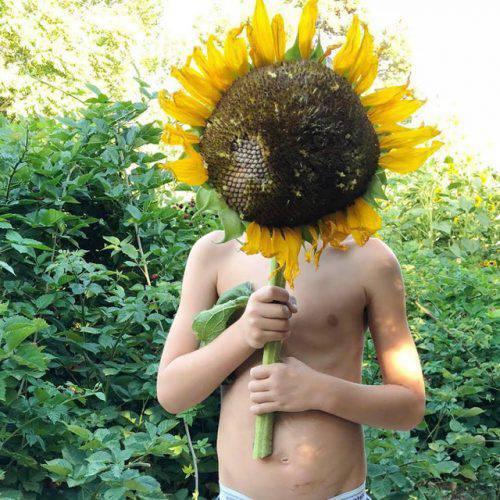 Cuộc sống vô cùng yên bình của cặp vợ chồng cùng 4 con trai bên khu vườn đầy hoa và rau - Ảnh 29.