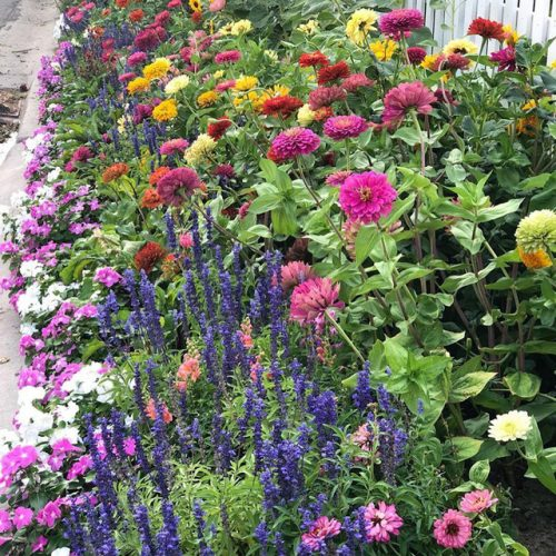 Cuộc sống vô cùng yên bình của cặp vợ chồng cùng 4 con trai bên khu vườn đầy hoa và rau - Ảnh 6.