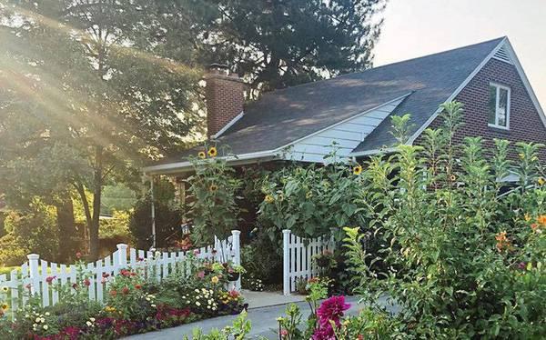 Cuộc sống vô cùng yên bình của cặp vợ chồng cùng 4 con trai bên khu vườn đầy hoa và rau