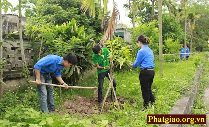 Chúng ta trồng cây xanh là đang tạo không khí tốt lành cho trái đất.